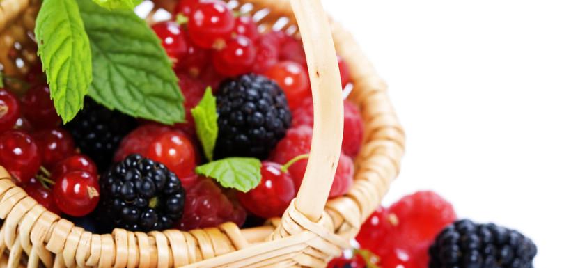 Il Sottobosco - Frutti di bosco