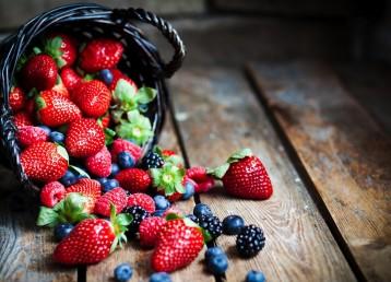 corso coltivazione frutti di bosco - il sottobosco